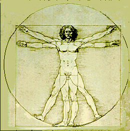 Vitruvian Man