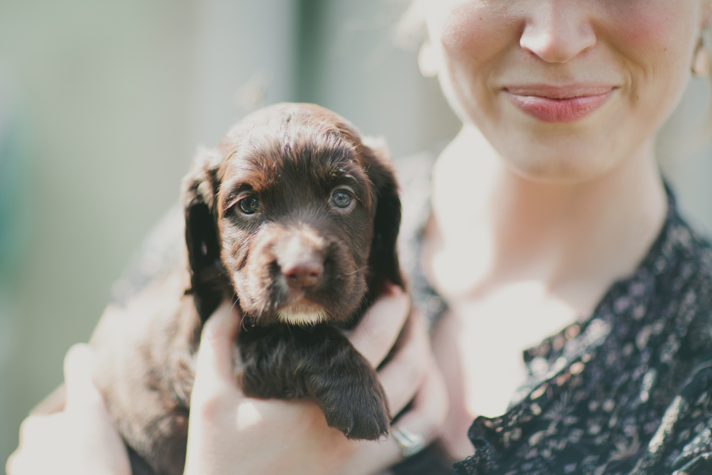 Can Pets Really Enhance Mental Health and Wellbeing?