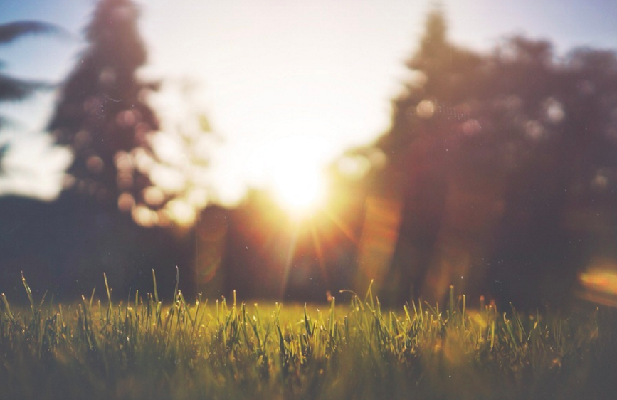 6 Choices For Making A Happier Life
