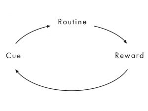 The Power of Habit - Habit Loop